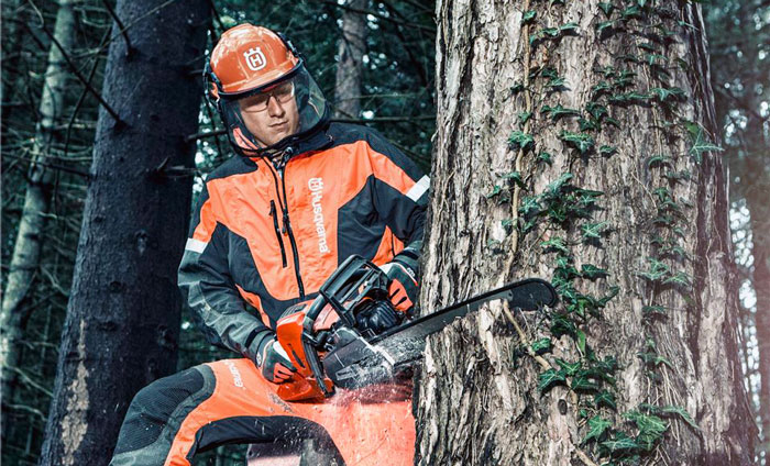 Как ножовкой спилить дерево
