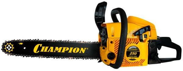 Champion 250